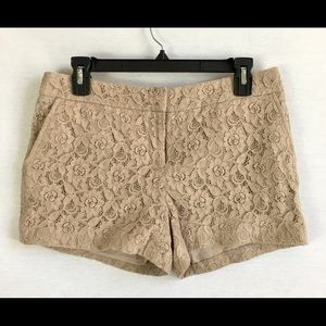 Cynthia Rowley Lace Shorts Cream Tan Size  6